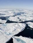 *grafica 1 Estrecho de Bering-descongelado